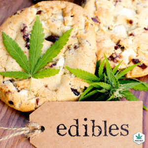 What Cannabis Method is BEST to use during COVID-19?