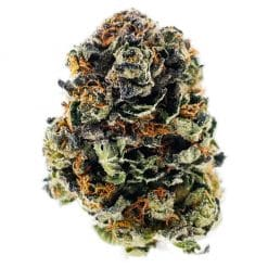 Buy Alien OG AAA Cannabis from Ganja West