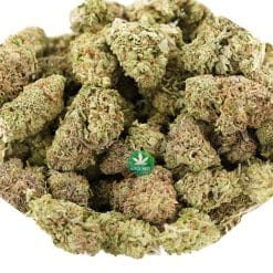 Wholesale – Black Widow AAA